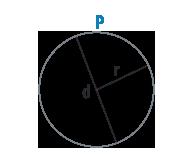 Окружность круга